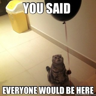 sad cat waiting for the party