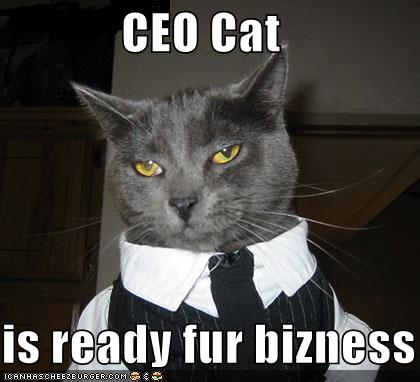 A Cat dressed as a CEO